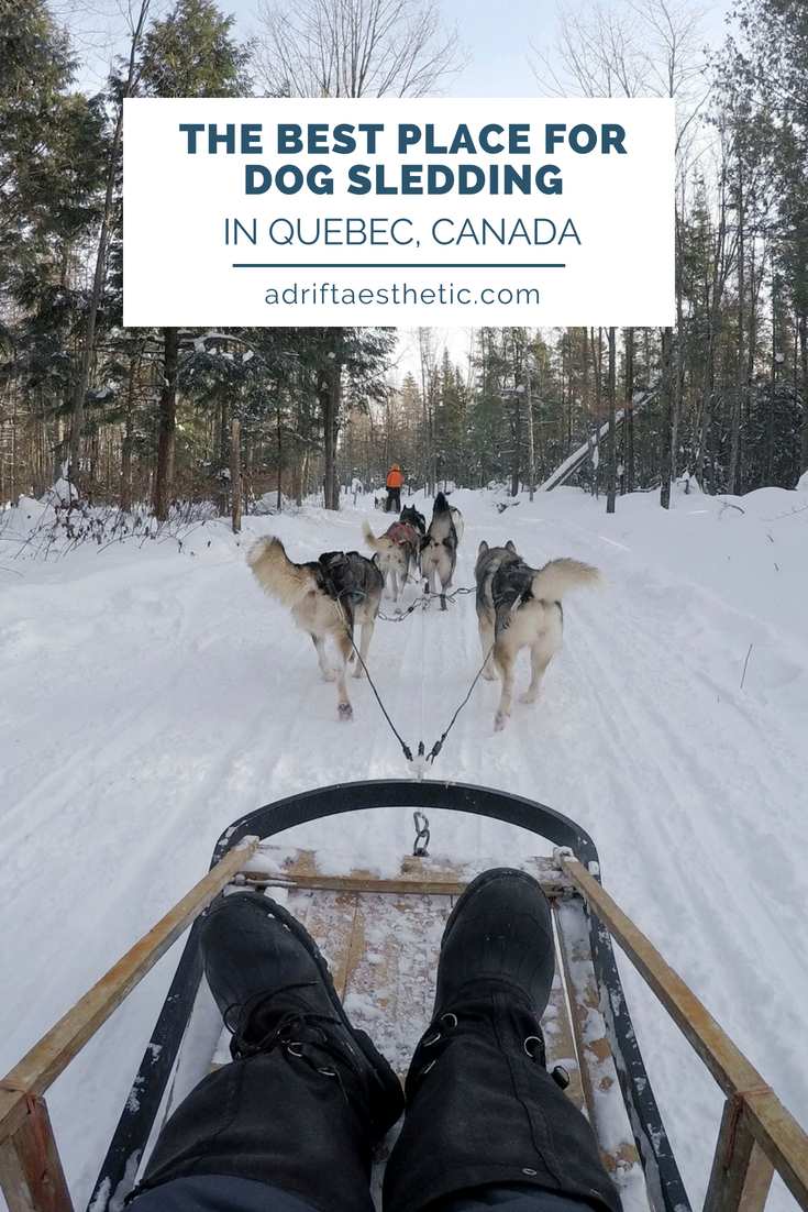 Enjoy the cold Canada winters by dogsledding near Quebec City! You'll get to se beautiful snowy landscapes and meet amazing pups on you adventure. #dogsledding #winter #quebec