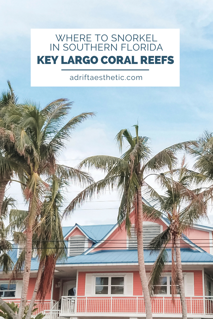 Southern Florida is an underwater playground. Spend your vacation snorkeling in the coral reefs near Key Largo for a chance to swim with a variety of fish, stingrays and jellies. #snorkel #florida #keylargo #travel
