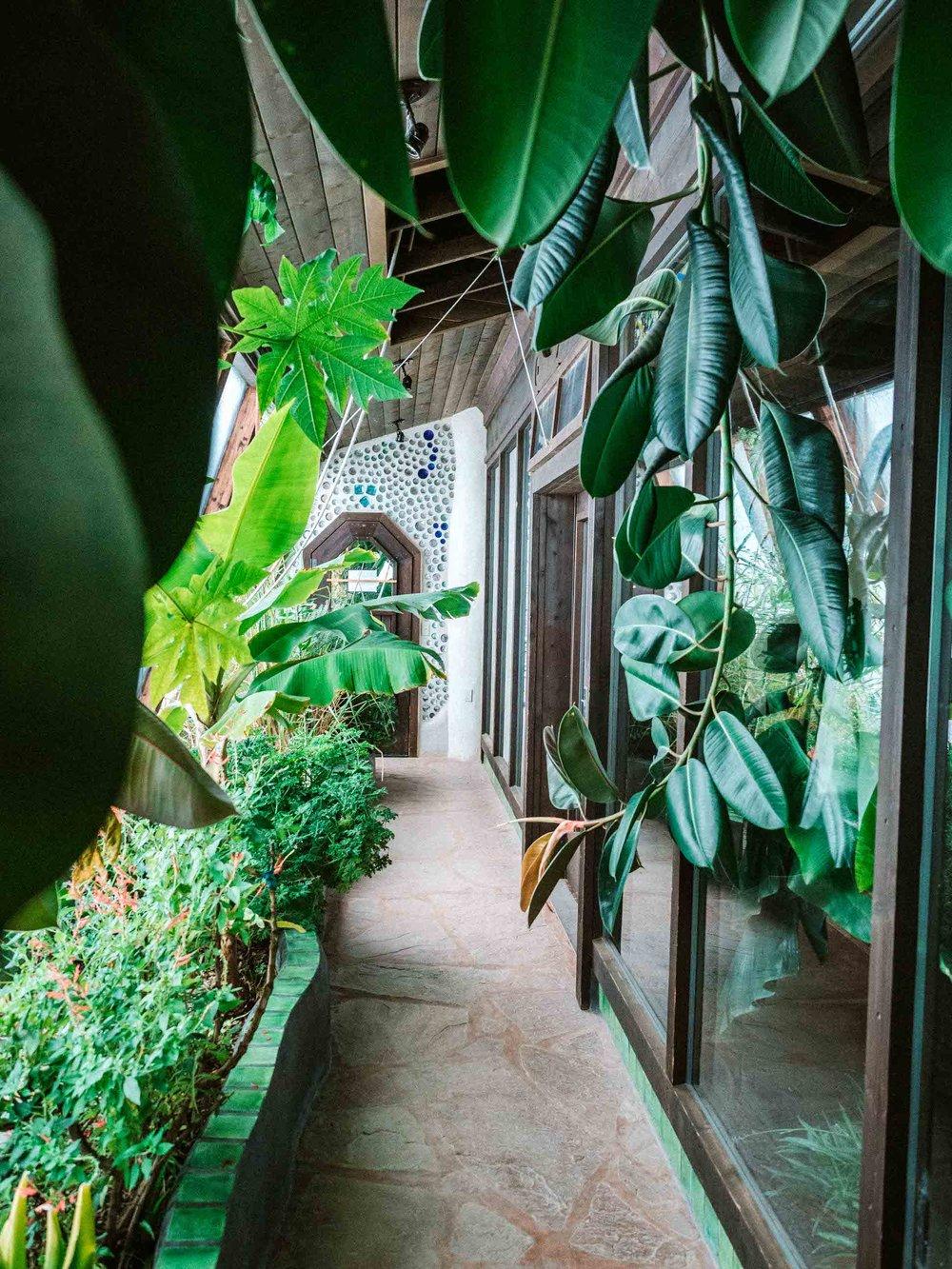 Earthship Greenhouse Interior