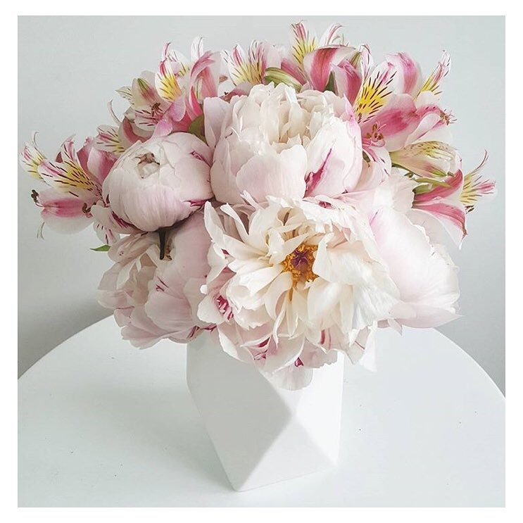 The-Flower-Project-The-Flower-Subscription-Company-Auckland-Peonies.jpg