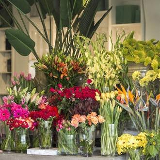 flowers_04_lowrez.jpg