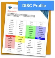 DISC Profile.jpg