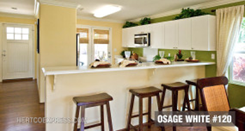 Osage-Kitchen-2.png