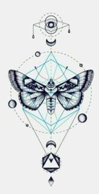 thn logo.jpg