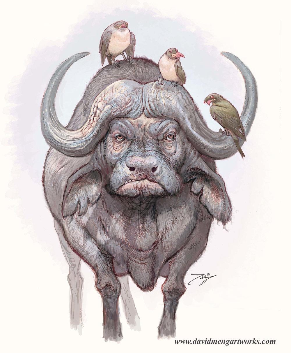 Buffalo_1_Meng.jpg