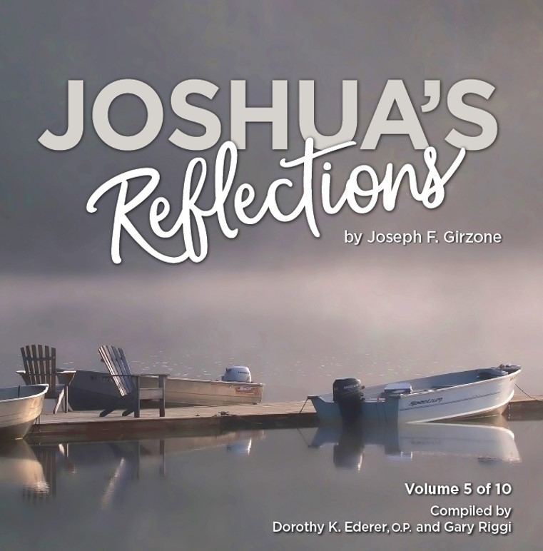 Joshua's Reflections 4.jpg