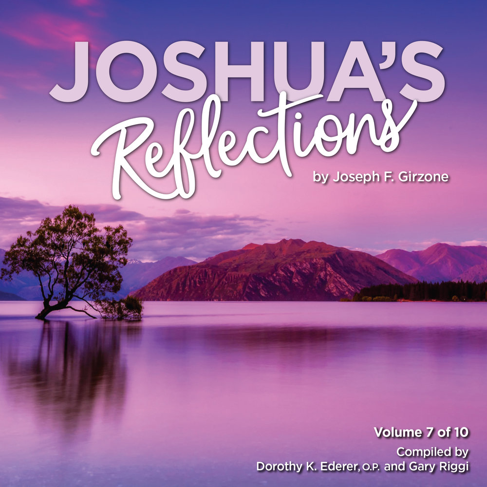 JoshuaReflections_Vol7_CoverPreview.jpg
