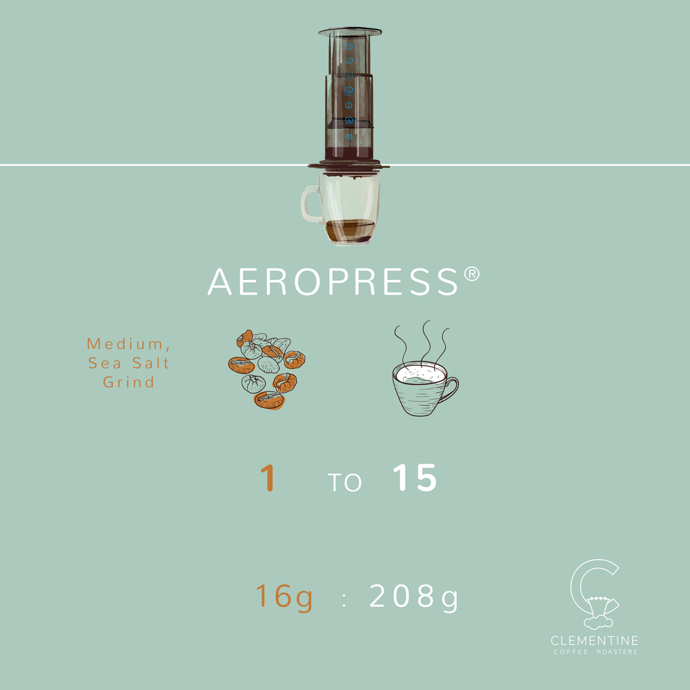 Aeropress_BrewMethod_Graphic.png