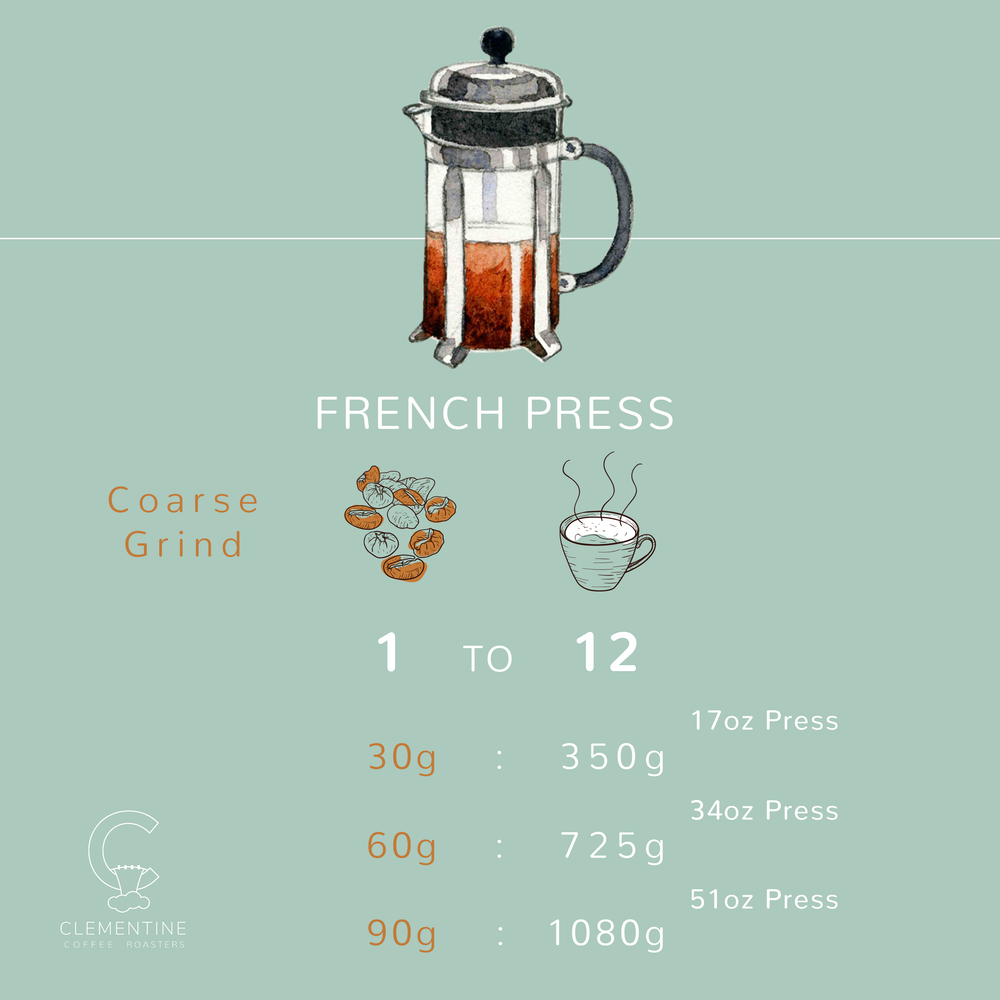 FrenchPress_BrewMethod_Graphic.png