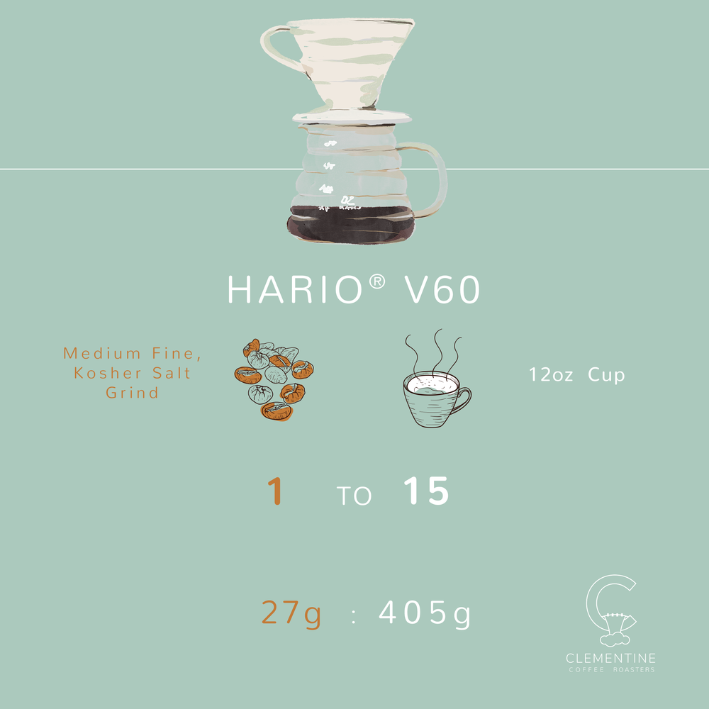 v60_BrewMethod_Graphic.png