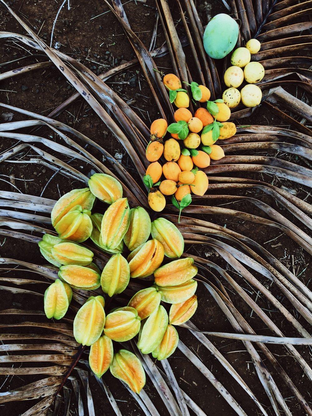 Startfruit. Lilikoi. Guava. Mango. Kauai, Hawaii.