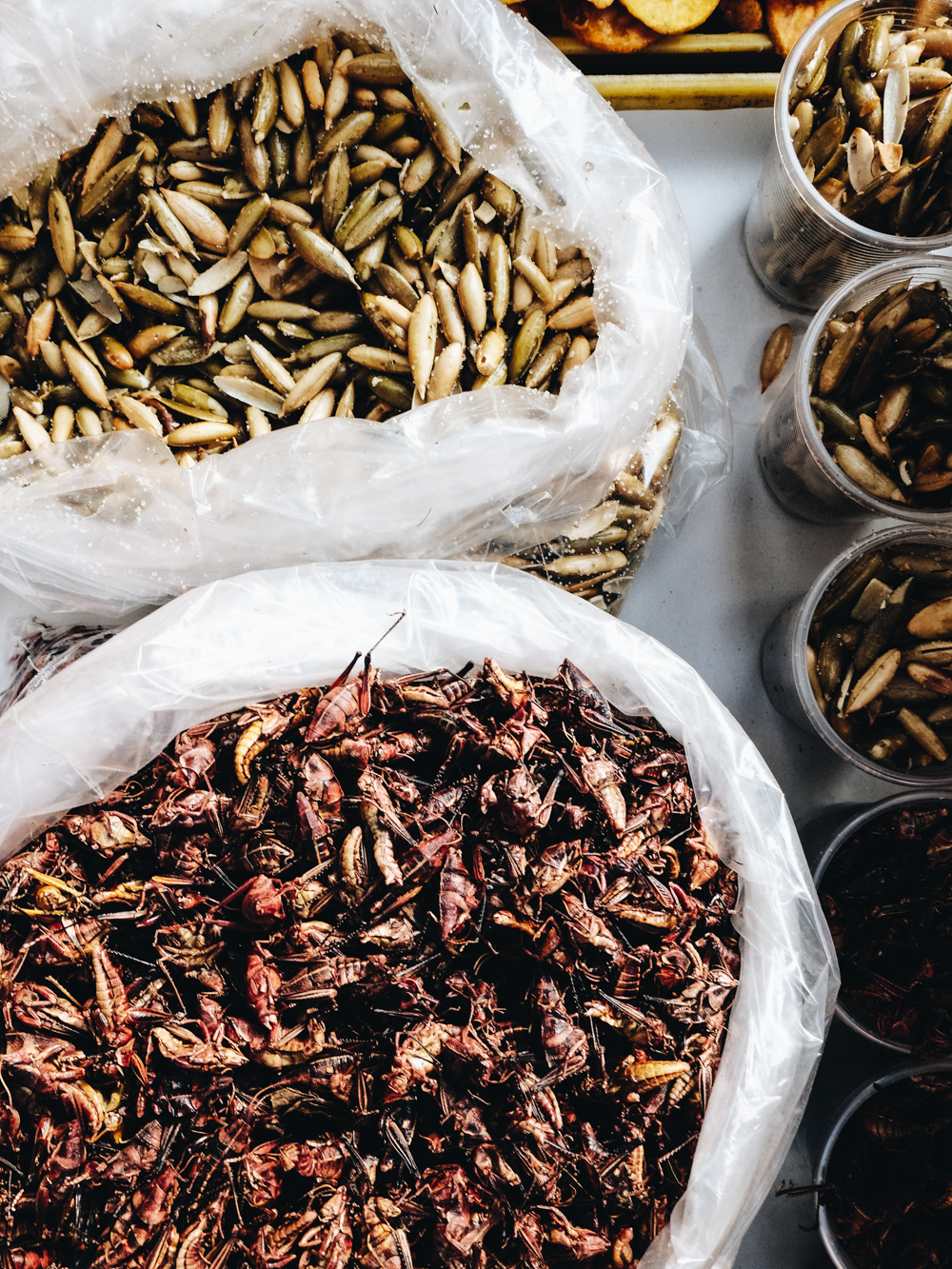 chapulines-Cookwilltravel-Mexico_City.jpg