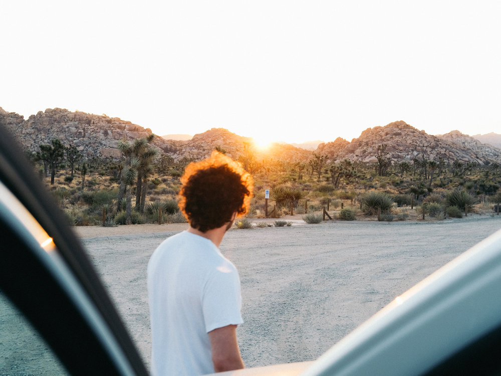 Joshua_Tree-Cookwilltravel-Road_Trip.jpg