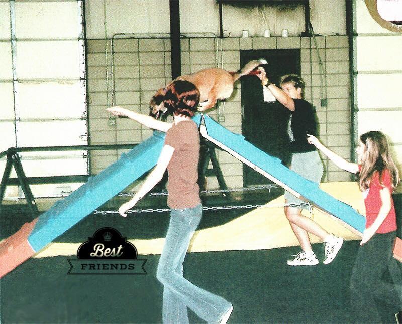 12yo Lauren in agility class