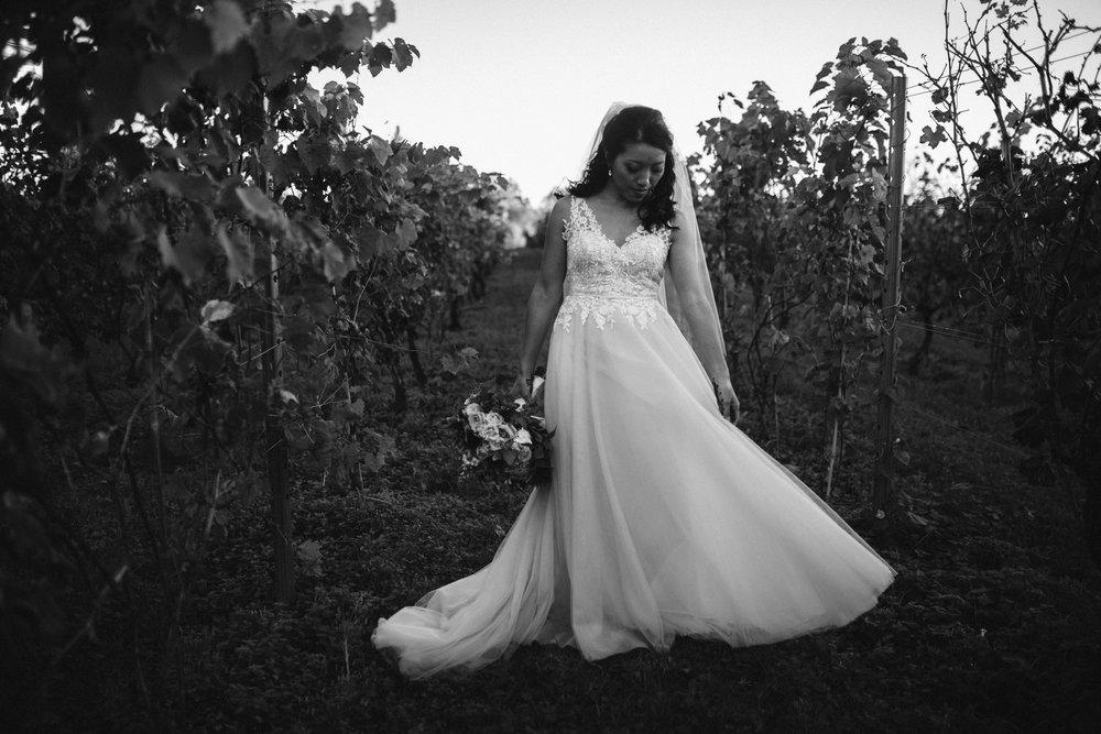 rebeccaburtphotography.hinduwedding.moraisvineyards.virginiawedding-102.JPG