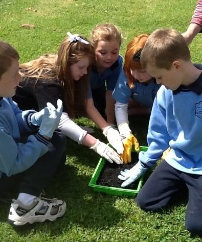 twc kids planting1.jpg