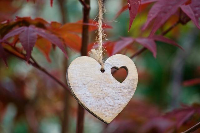 heart-3462727_640.jpg