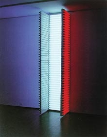 Example 1   Flavin Da N (1933 ~, New York)  Untitled (for the citizens of the Commonwealth of France ...) 1989 Red, blue, white fluorescent lamp height depending on the venue New York Leo Gallery