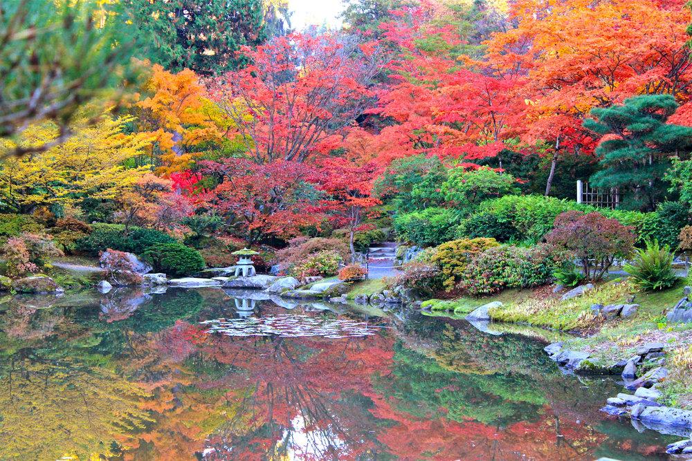 Japanese Garden 2.jpg