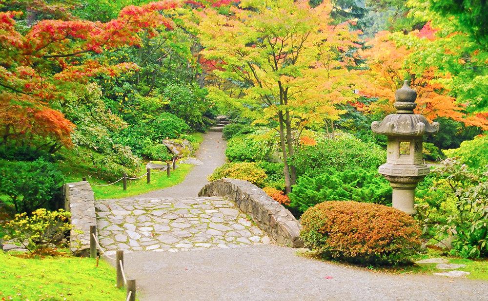 Japanese Garden 5-2.jpg