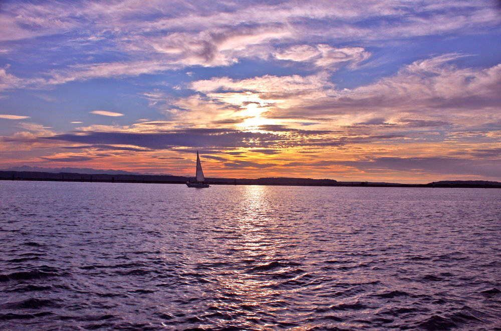 View  from Everett marina.jpg