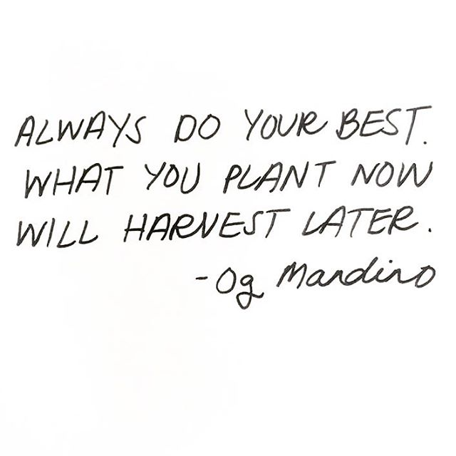🌱 #alwaysdoyourbest #grow #plantforthefuture #inspirationalquotes #sachilosangeles
