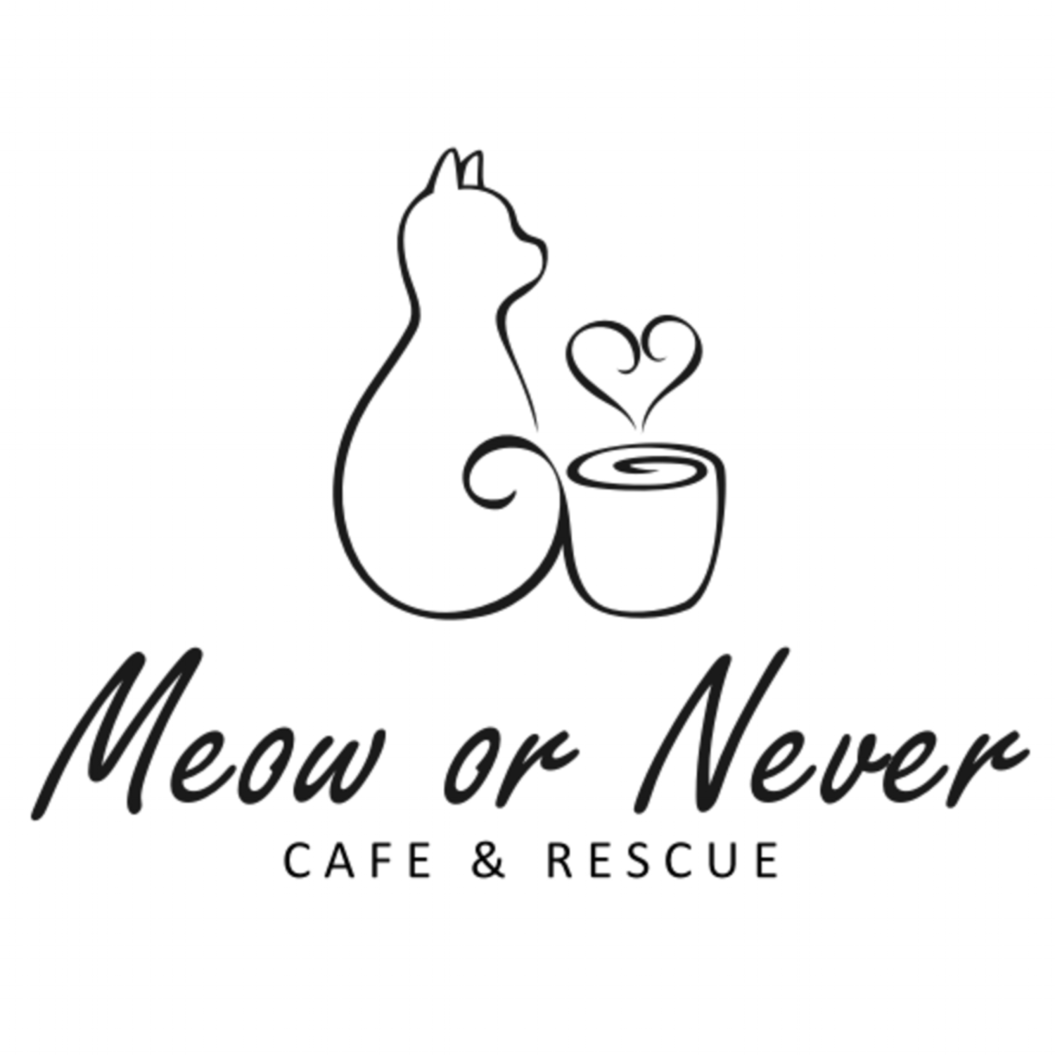 Meow or Never Las Vegas Cat Cafe & Rescue