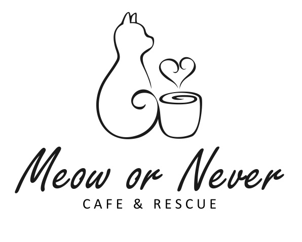 Meow or Never Cafe & Rescue