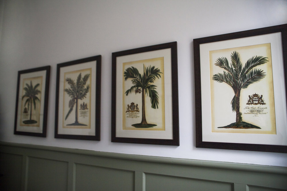 aa powder room palms.jpg