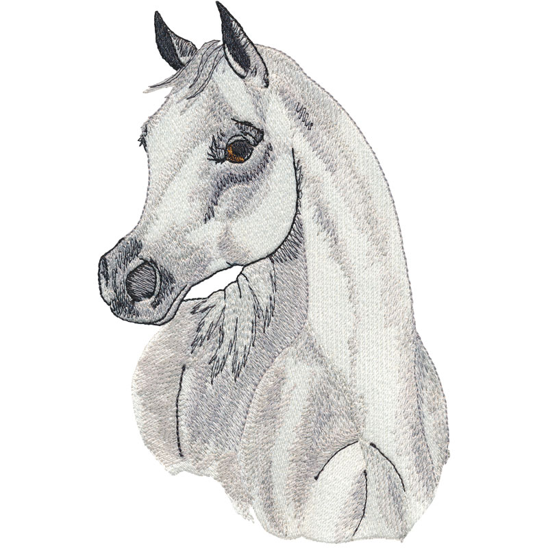 PL01 Arab Horse Head