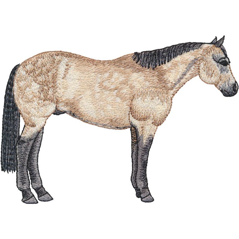 PL04 Quarter Horse