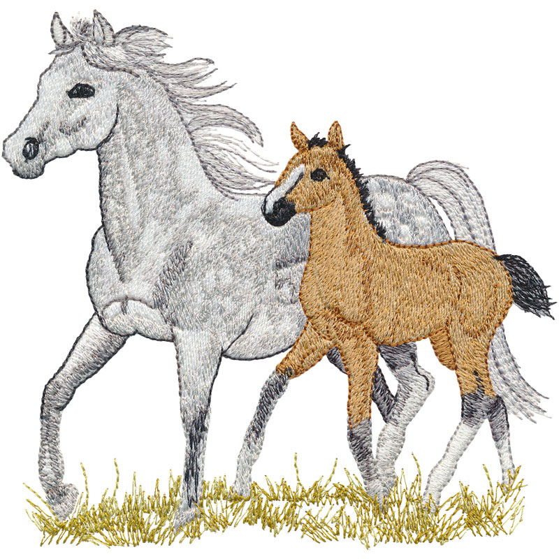 PL07 Mare and Foal