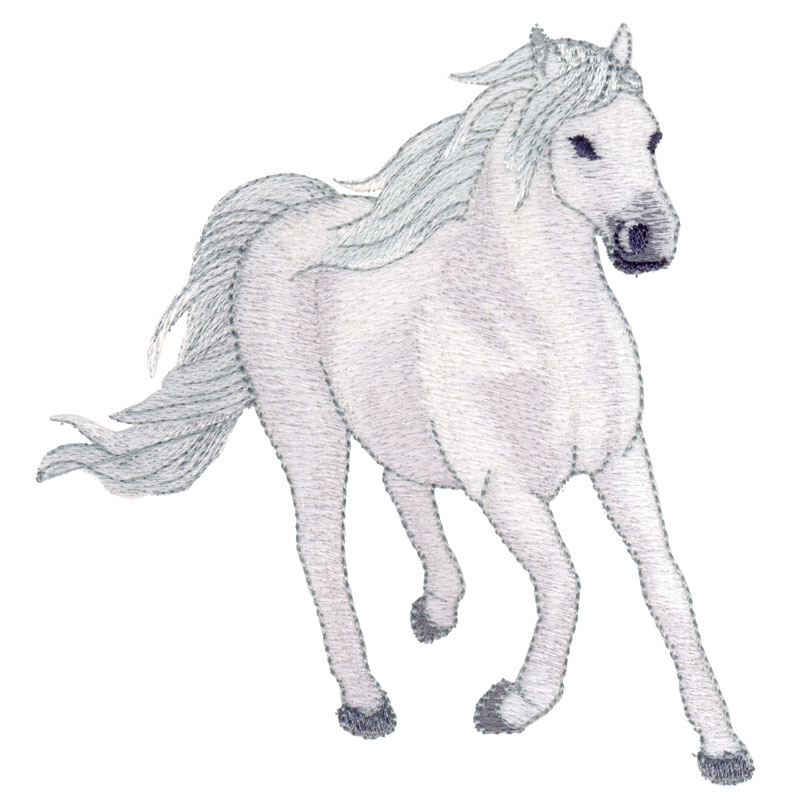 PL10 Andalusian Horse