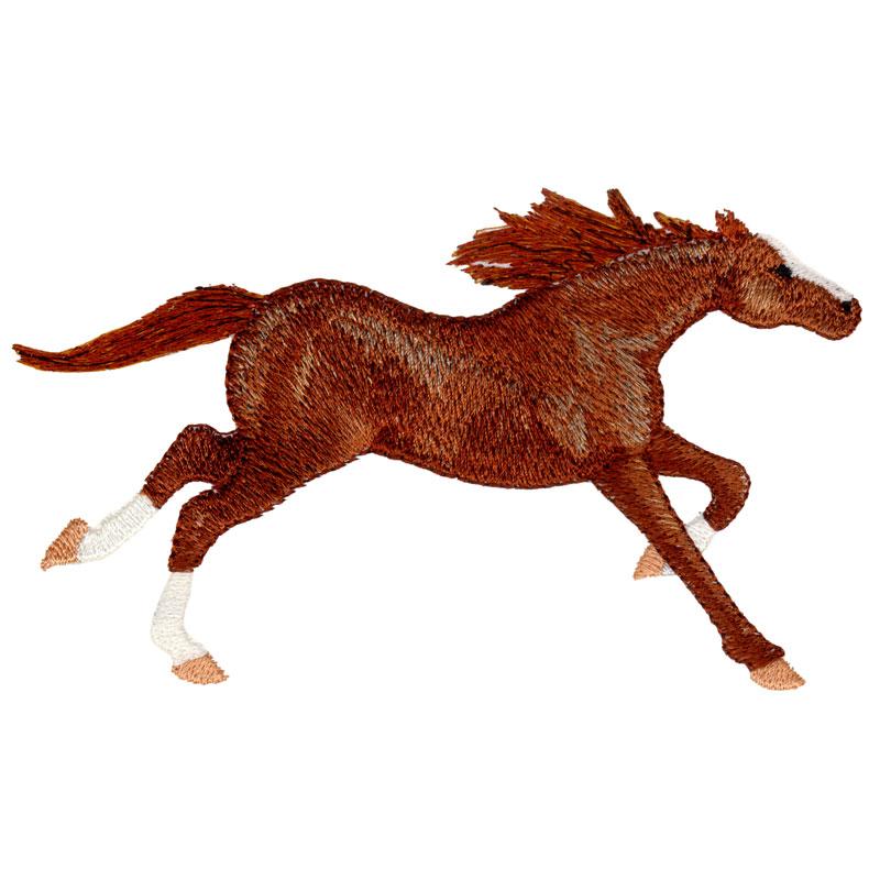 PL17 Thoroughbred Horse