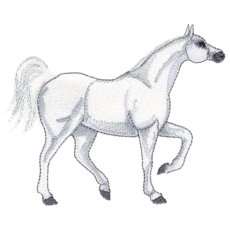 PL23 Arab Horse