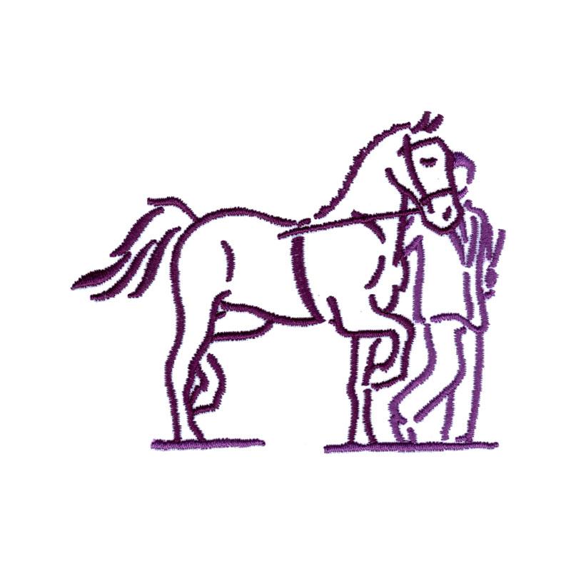 PL27 Showing Horse