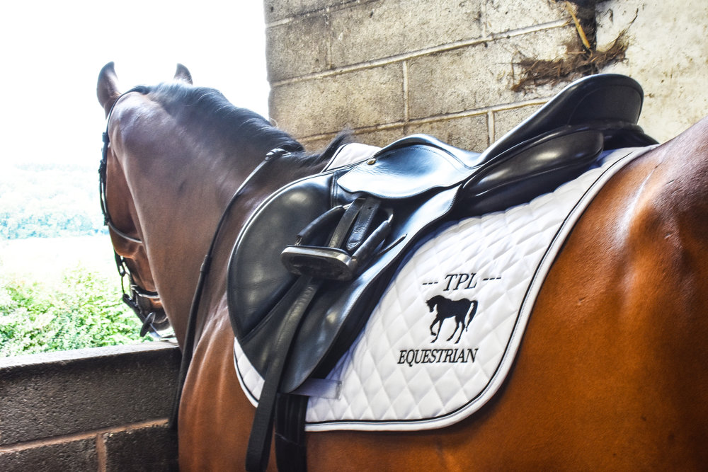 This stunning image features our piped edge saddle cloth which can be personalised with your own logo or choice of text