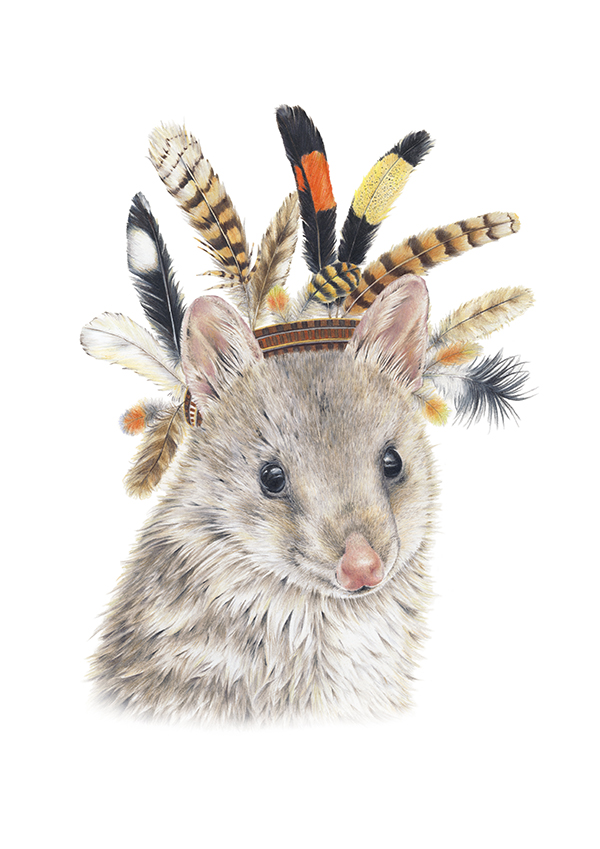 AUGUST 30 2018THANKYOU TO POPCORN BLUE ILLUSTRATOR, SARAH HARDY, FOR CREATING THIS INCREDIBLY CUTE GREEN HEROES QUOLL. TO PURCHASE YOUR LIMITED EDITION PRINT VIST OUR SHOP. A PERCENTAGE OF EACH SALE IS DONATED TO GREEN HEROES CONSERVATION PROJECTS. - SPOTTED QUOLL BY POPCORN BLUE