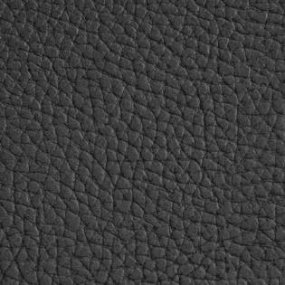 vegan leather4.png