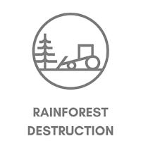 FASHION & RAINFOREST DESTRUCTION