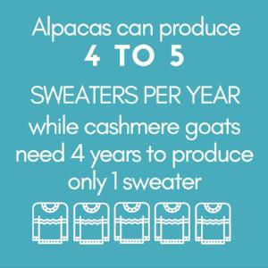 4 to 5 sweaters..png