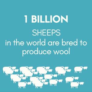1 billion sheeps..png