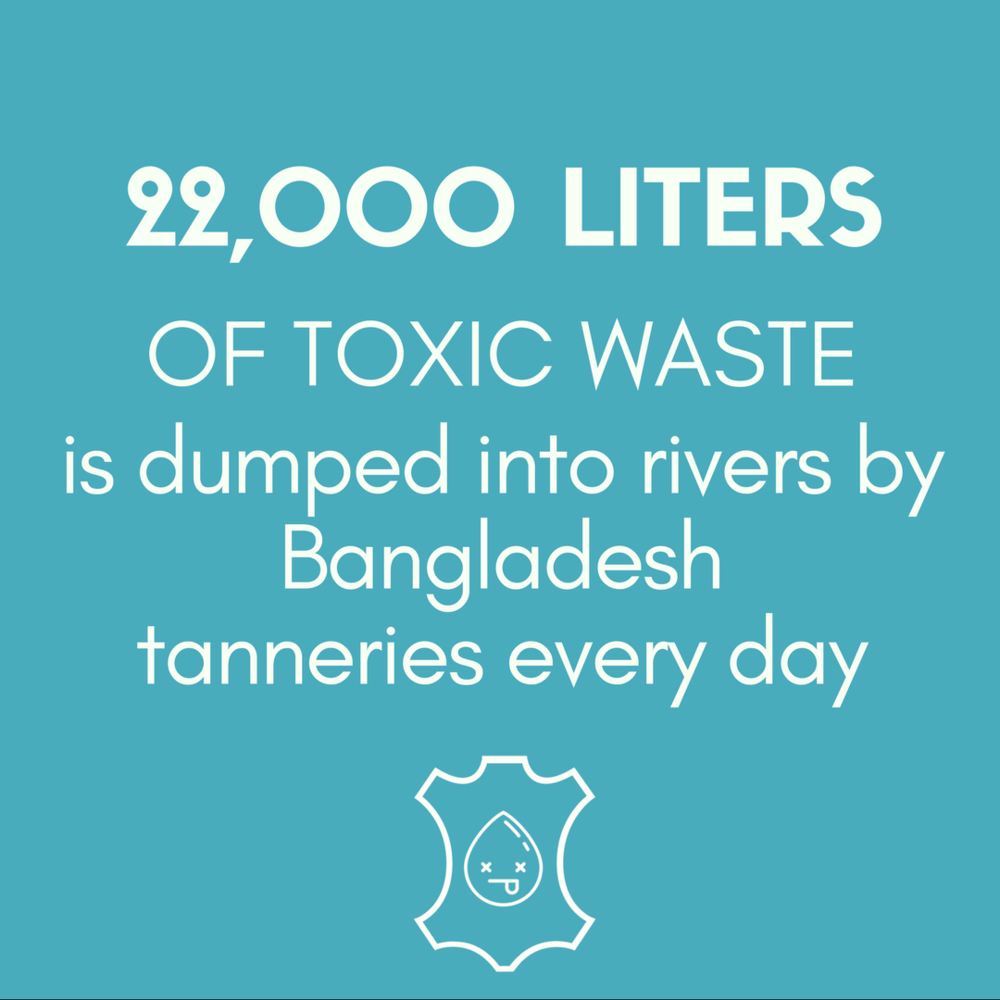 22,000 LITERS OF TOXIC WASTE is dumped into rivers by Bangladesh tanneries every day