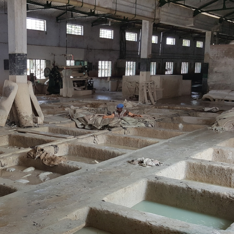Copy of Copy of Leather tannery