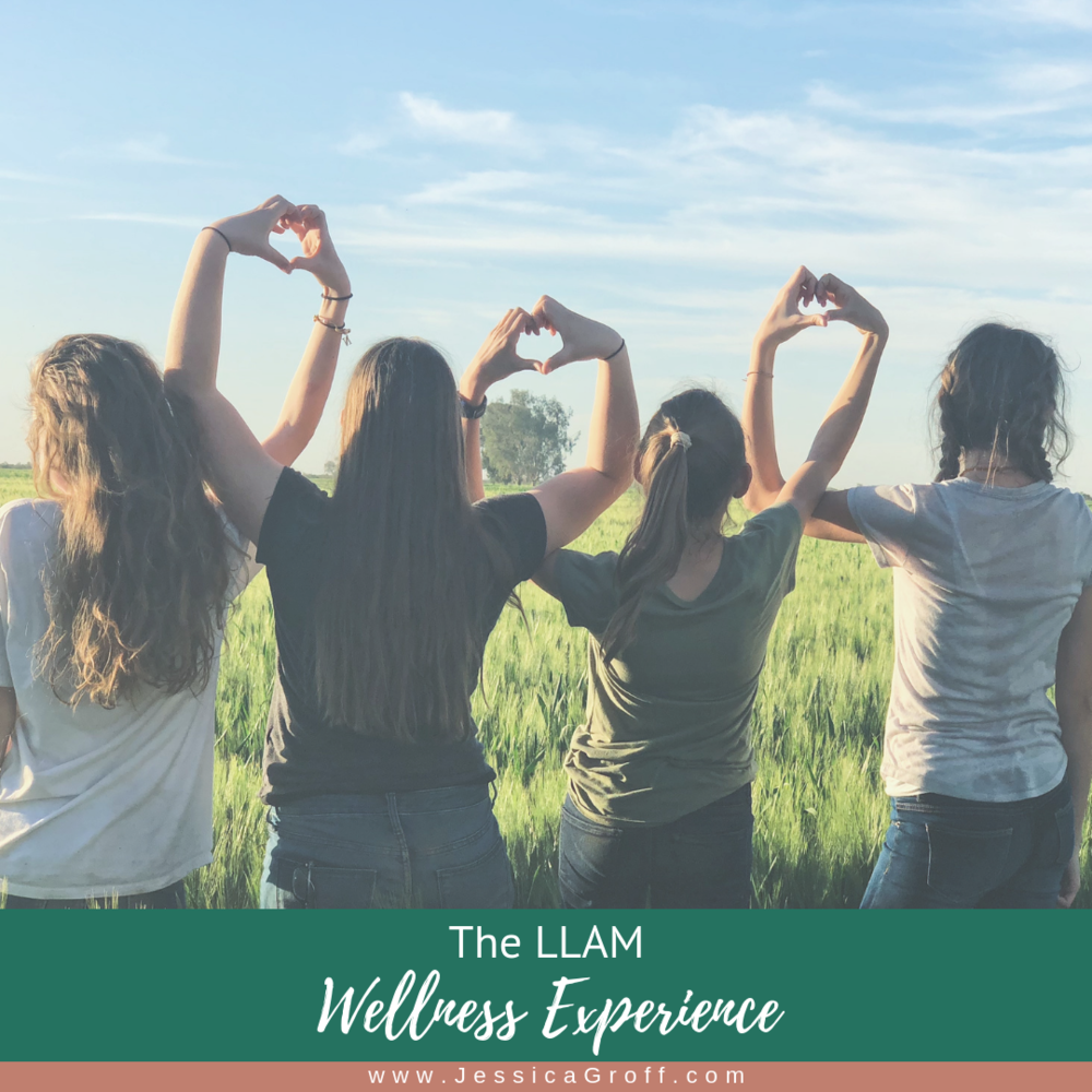 LLAM Wellness Experience.png