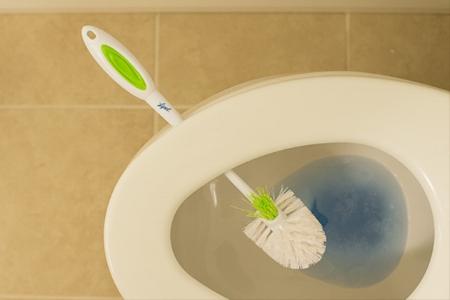toiletbrushes.jpg