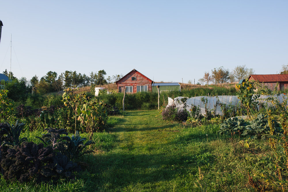 Rustic Barn and Organic Farm Wedding Venue Outside Milwaukee, WI