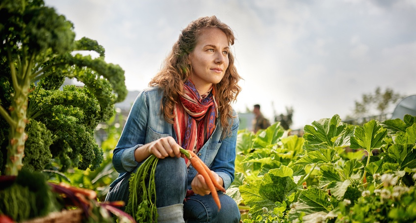 Friendly-woman-harvesting-fresh-vegetables-from-the-rooftop-greenhouse-garden-1.jpg
