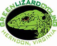 Green Lizard Logo.jpg