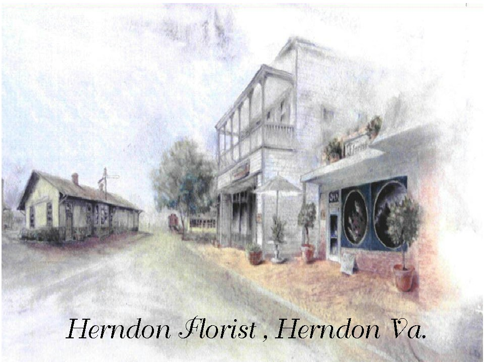 Herndon Florist Logo.jpg